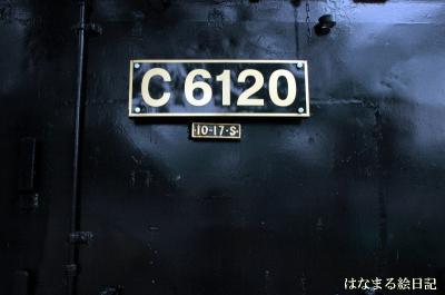 DSC_8282-1.jpg