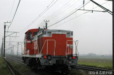DSC_9913s.jpg