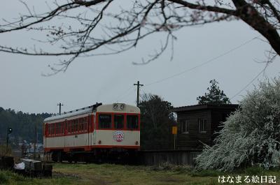 kashima20070327-018.jpg