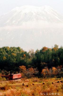 nisekon-3.jpg