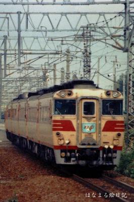 shiro-12.jpg